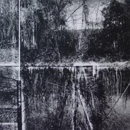 "Cutler Park b&w, Monoprint, 15""x15"", Marilyn Sherman"